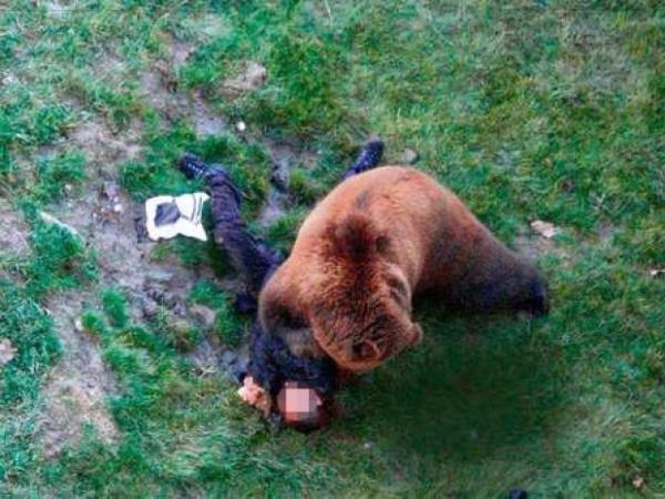 «Выжившие» по-якутски-2: оскальпированный медведем охотник одолел зверя врукопашную